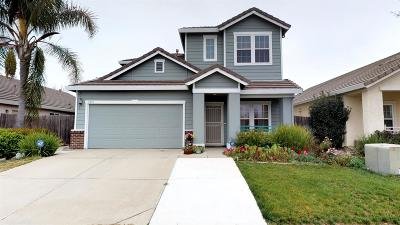 Elk Grove Single Family Home For Sale: 7515 Damascas Drive