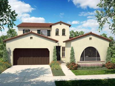 Davis Single Family Home For Sale: 869 Pierce Lane