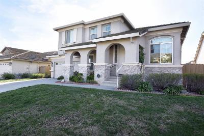 Rancho Cordova Single Family Home For Sale: 10994 Pelara Way