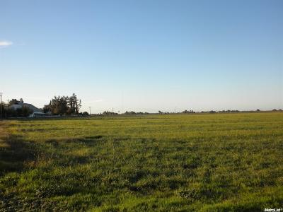 Tracy Commercial Lots & Land For Sale: 31901 South Determination Drive