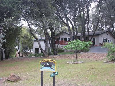 Groveland Single Family Home For Sale: 20711 Chaparral