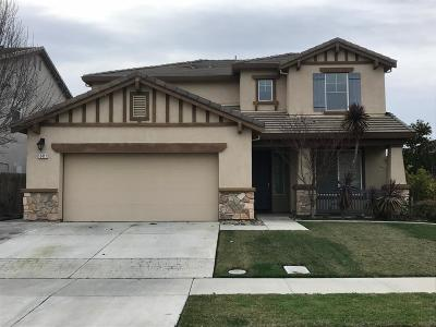 Stockton Single Family Home For Sale: 10411 Tyke Drive
