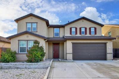 Sacramento Single Family Home For Sale: 7470 Castledown Way