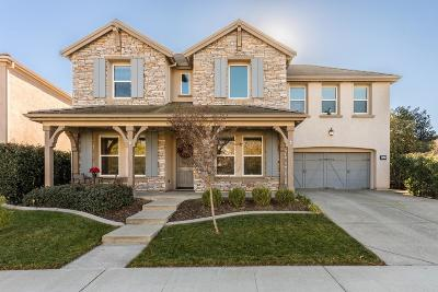 Lincoln Single Family Home For Sale: 1347 Standish Circle