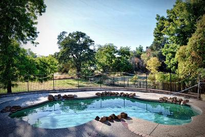 Citrus Heights Single Family Home For Sale: 8011 Mariposa Avenue