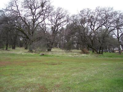 Yuba County Residential Lots & Land For Sale: 3 South Golden Parkway