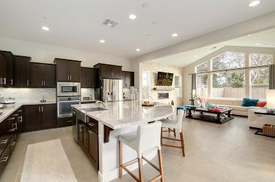 Roseville Single Family Home For Sale: 9853 Sword Dancer Drive
