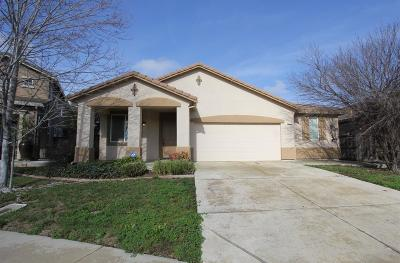 Elk Grove Single Family Home For Sale: 5313 Hirsch Circle