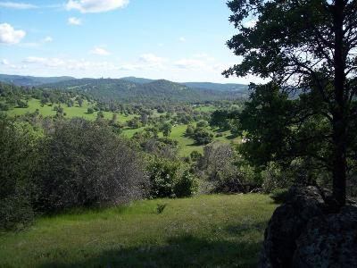 Yuba County Residential Lots & Land For Sale: 20 Township Road