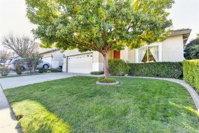 Rocklin Single Family Home For Sale: 2010 Cobble Hills Court