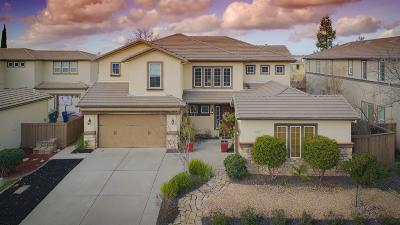 Folsom Single Family Home For Sale: 1009 Sandwick