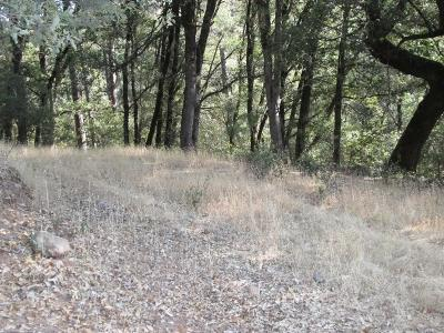 Grass Valley Residential Lots & Land For Sale: 12145 Rainbow Road