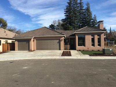 Modesto Single Family Home For Sale: 820 Hintze Landing Court