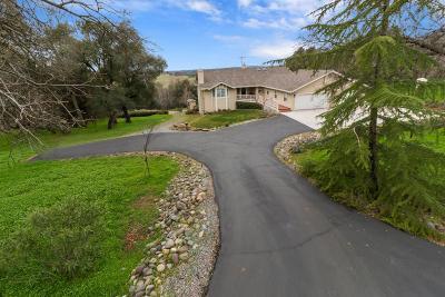 Single Family Home For Sale: 5320 Terra Bella Lane