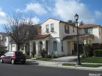 Mountain House Single Family Home For Sale: 449 Steven Street