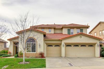 El Dorado Hills Single Family Home For Sale: 8092 Damico Drive