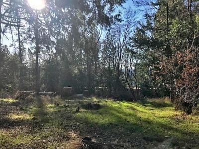 Camino Residential Lots & Land For Sale: 5130 Pony Express Trail