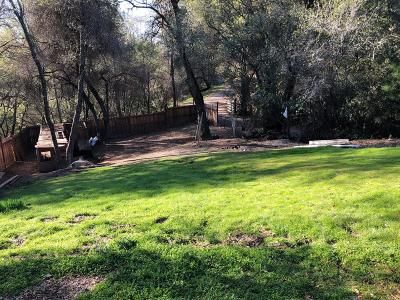Diamond Springs Residential Lots & Land For Sale: 4261 Downing Lane
