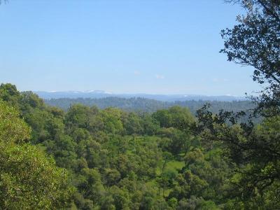 El Dorado Residential Lots & Land For Sale: 2001 Lauren Lane