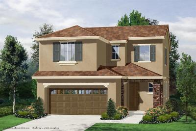 Roseville Single Family Home For Sale: 1256 Oakbriar Circle