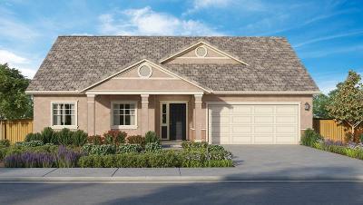 Manteca Single Family Home For Sale: 576 Merlin Lane