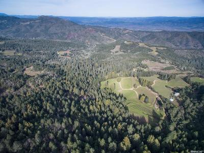 Napa County Commercial Lots & Land For Sale: 3601 Mount Veeder
