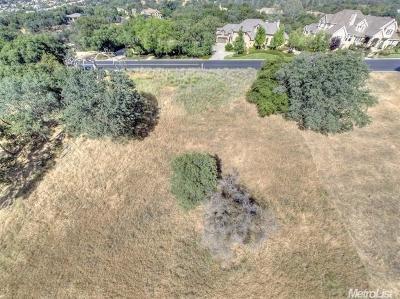 El Dorado Hills Residential Lots & Land For Sale: 3950 Errante Drive