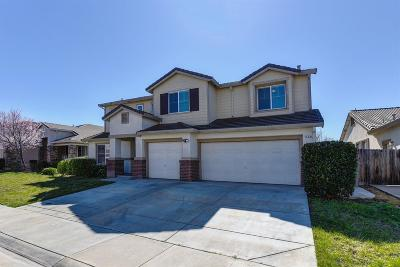 Elk Grove Single Family Home For Sale: 8544 Modena Way