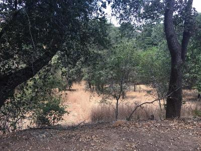 El Dorado Hills Residential Lots & Land For Sale: 1597 Bonita Court