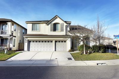Rancho Cordova Single Family Home For Sale: 11700 Dionysus Way