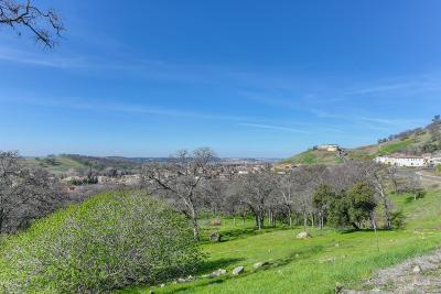 El Dorado Hills Residential Lots & Land For Sale: 1050 Via Treviso
