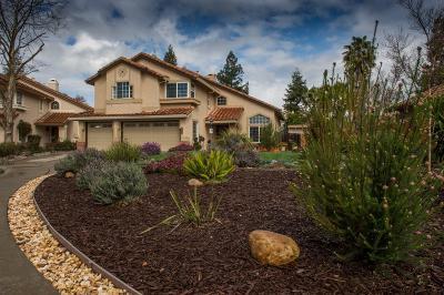 Elk Grove Single Family Home For Sale: 4609 Ventura West Way