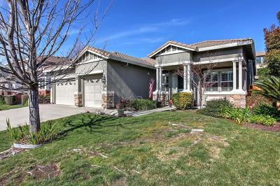 Roseville Single Family Home For Sale: 3033 Grasmere Circle
