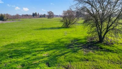 Stockton Residential Lots & Land For Sale: 8150 Foppiano Court