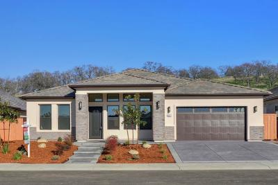 Folsom Single Family Home For Sale: 668 Oreno Circle