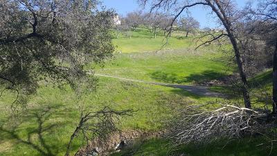 El Dorado Hills Residential Lots & Land For Sale: 1072 Via Treviso