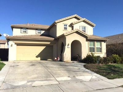 Patterson Single Family Home For Sale: 1435 Berrendas Street