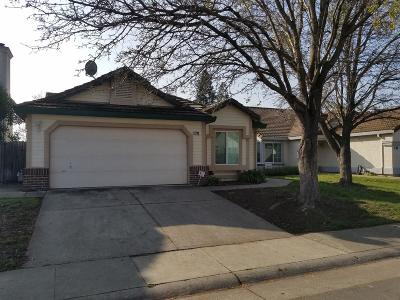 Elk Grove Single Family Home For Sale: 8799 Mesa Brook Way