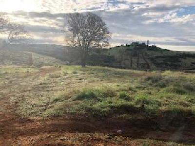 Valley Springs Residential Lots & Land For Sale: South McAtee Street