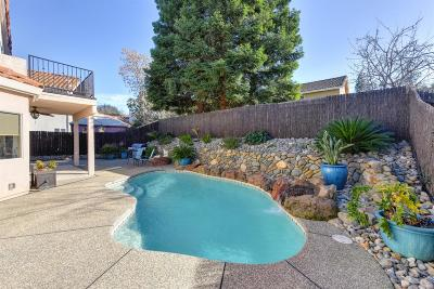 Rocklin Single Family Home For Sale: 3626 Amethyst Drive