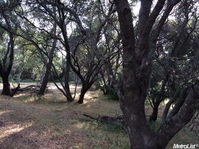 Granite Bay Residential Lots & Land For Sale: 7420 Vogel Valley