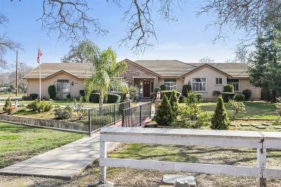 Sacramento Single Family Home For Sale: 4989 Pasadena Avenue