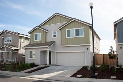 Roseville Single Family Home For Sale: 7216 Corvus Circle