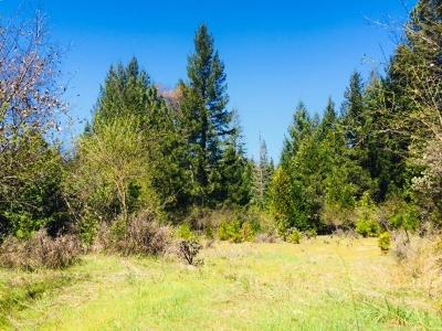 Somerset Residential Lots & Land For Sale: 5340 String Canyon Road