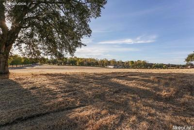 Shingle Springs Residential Lots & Land For Sale: 5361 Weeping Willow Court