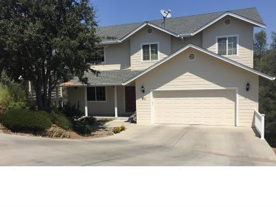 Copperopolis Single Family Home For Sale: 413 Winchester Way