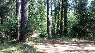 Nevada County Residential Lots & Land For Sale: 16976 Cooper Road
