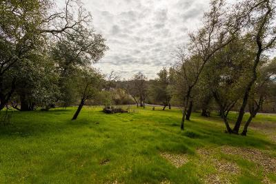 Lincoln Residential Lots & Land For Sale: 1598 Camino Verdera