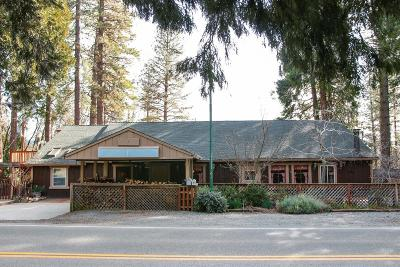 Georgetown CA Commercial For Sale: $475,000