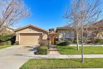 Sacramento Single Family Home For Sale: 1448 Danbrook Drive